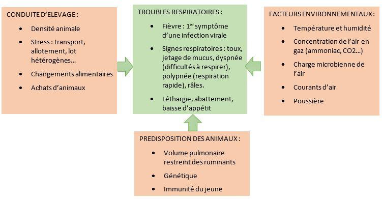 Facteurs de troubles respiratoires