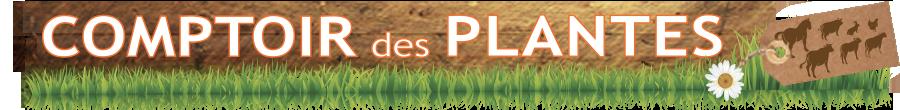 comptoir-des-plantes-logo-1552028692.jpg